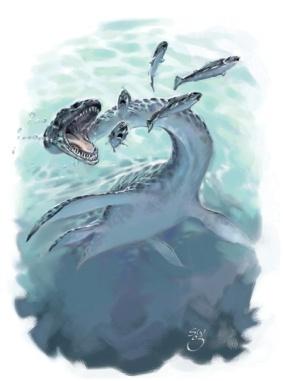Dinosaur - Plesiosaurus
